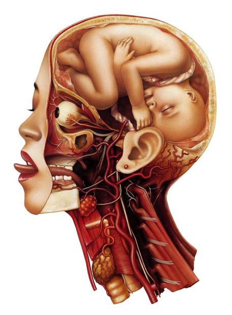 foetusinhead